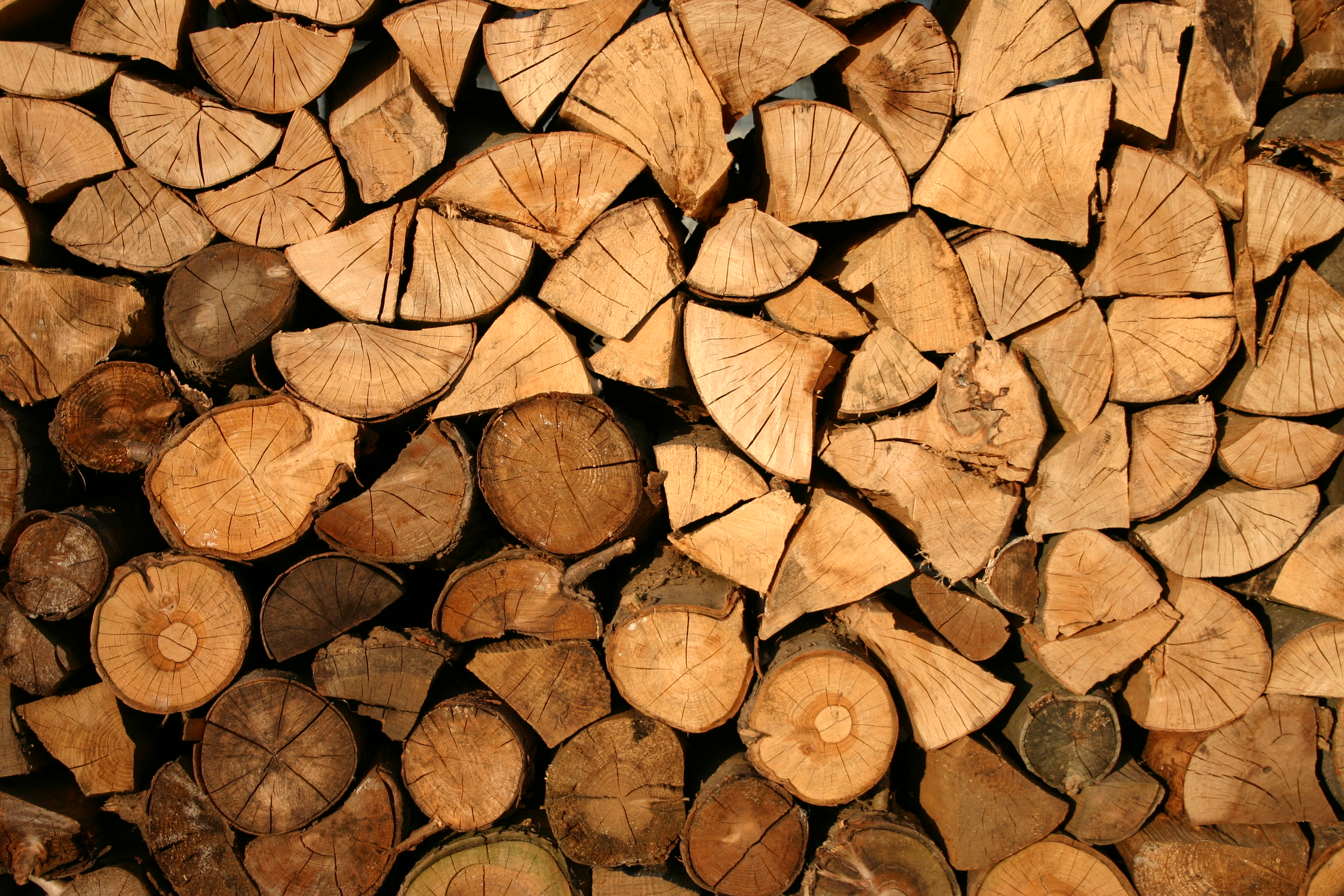 Why You Should Buy Your Wood This Summer | Amberglow Fireplaces